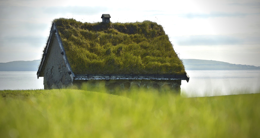 green roof on a small building by the sea