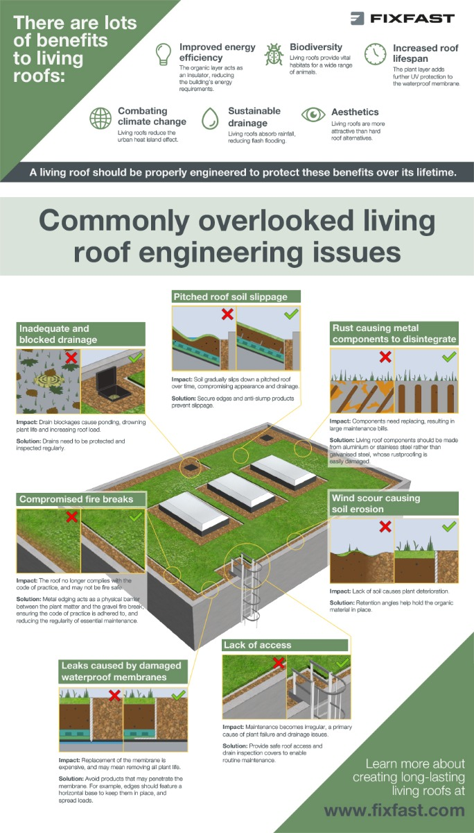 Image showing the often overlooked issues around engineering a successful living roof