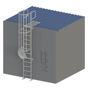 RL40 series access ladder